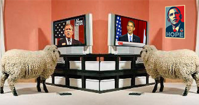 tv sheep